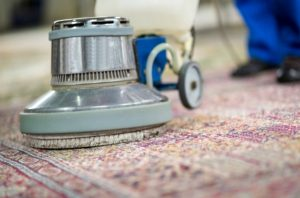rug cleaning warren nj
